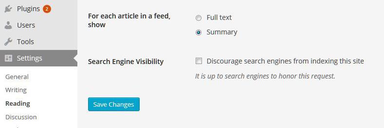 función noindex en WordPress