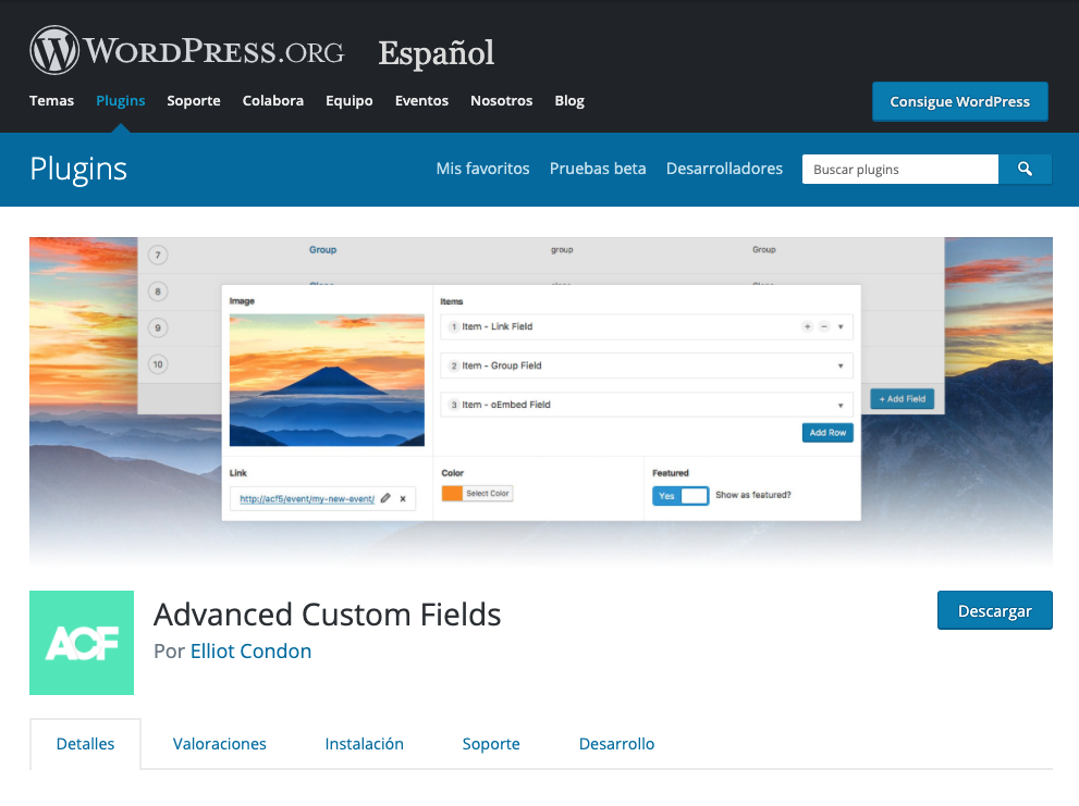 Plugin Advanced Custom Fields.